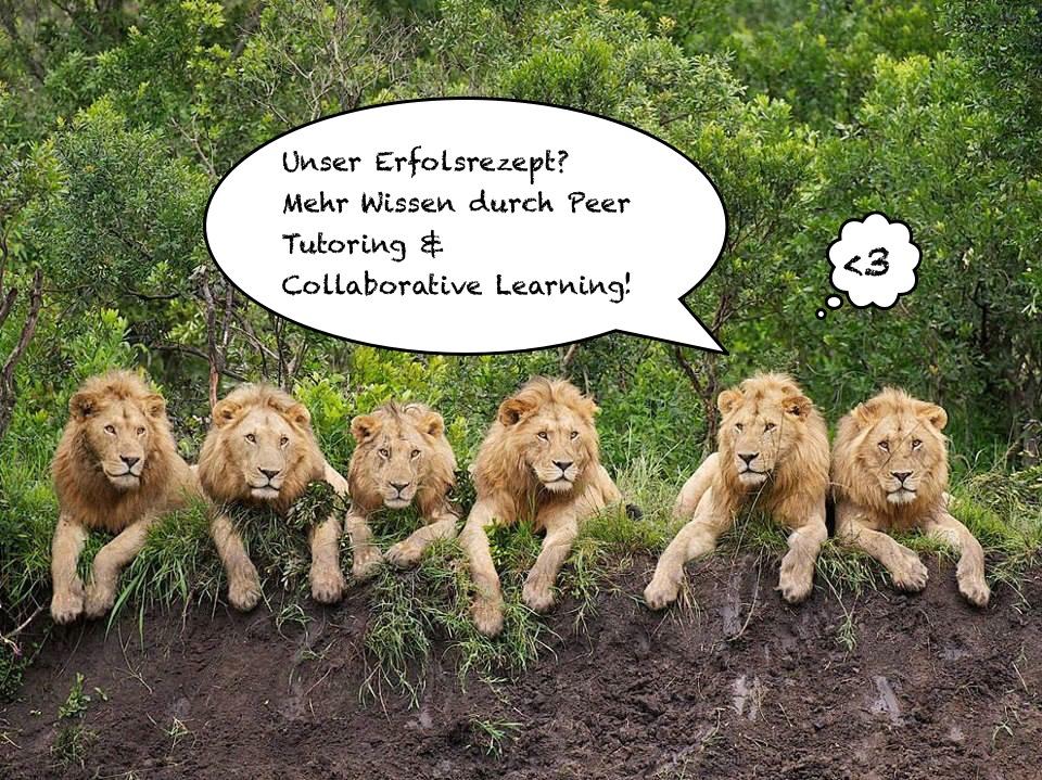 Meme_Löwen1.jpg