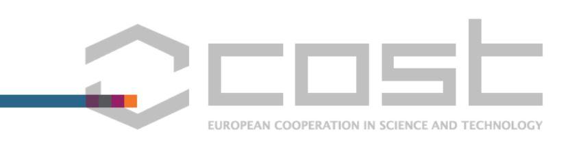 COST Logo.JPG